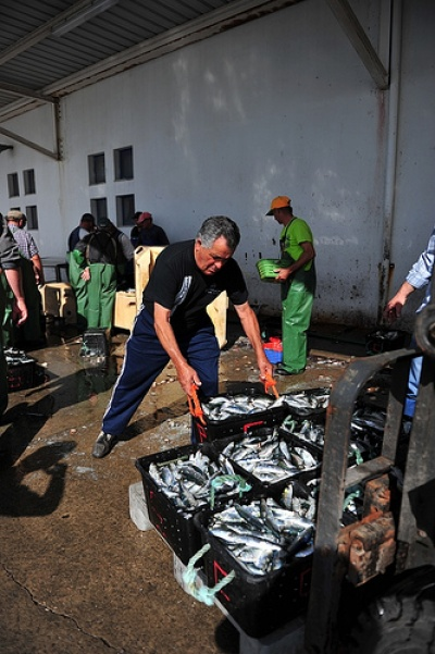 O Porto de Pesca de Tavira é uma obra que se arrasta à mais de 15 anos e tem servido de promessa recorrente em campanhas eleitorais